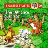 sylvain-et-sylvette-t-22-une-fameuse-surprise